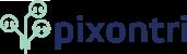 Pixontri ERP Experts